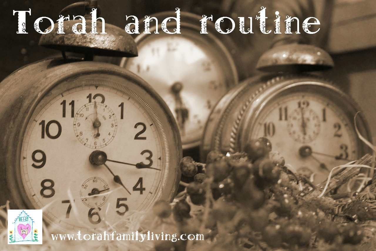 Torah home management – routine