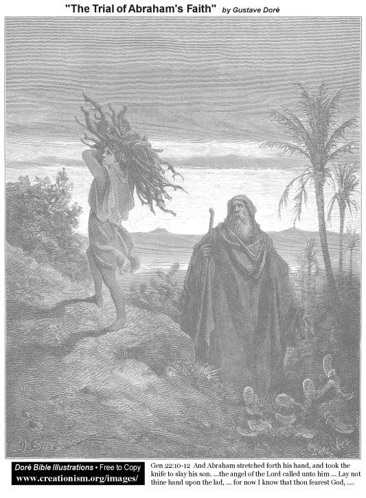 Vayera resources