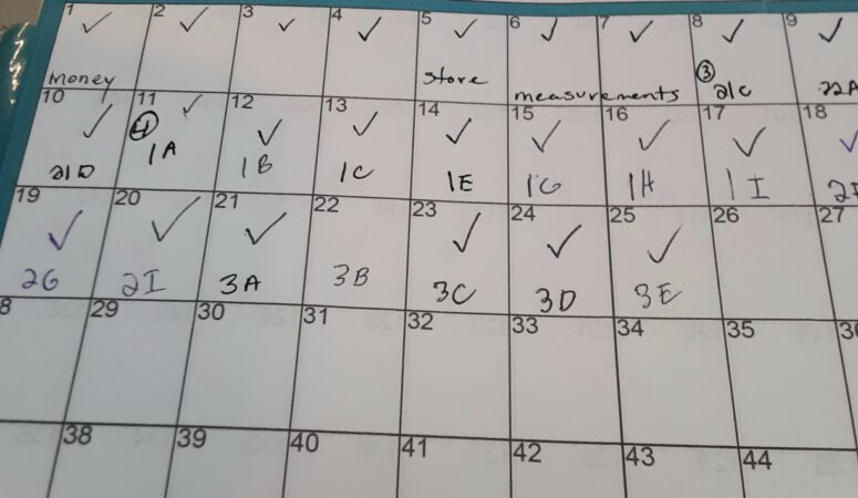 10 creative ways to use your Torah planner